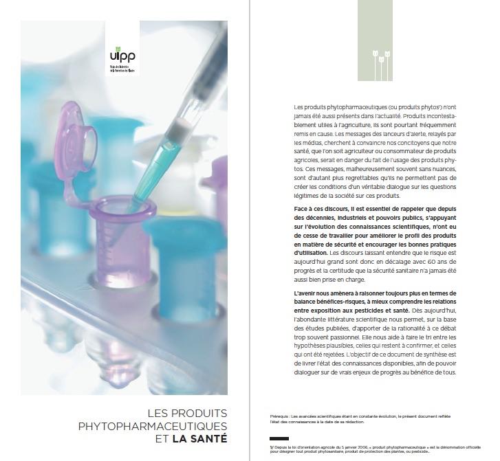 brochure-uipp-2